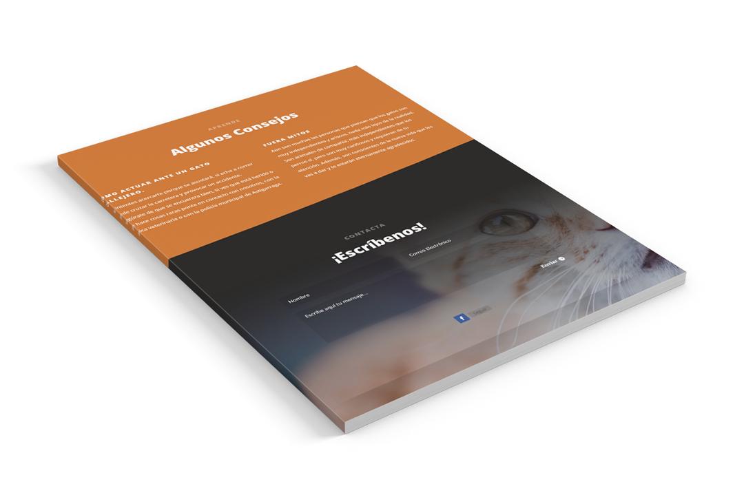astikat-seik-diseño-web-y-redes-sociales-en-gipuzkoa-1